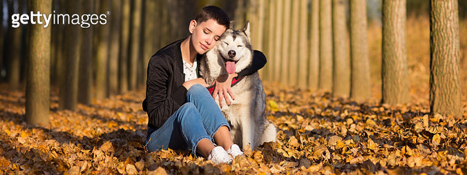 Young woman hugging her Siberian husky dog on a sunny autumn day in the forest. - gettyimageskorea