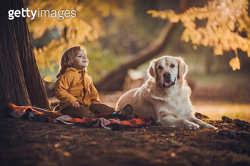 Smiling little boy relaxing with his retriever during autumn day in nature. - gettyimageskorea
