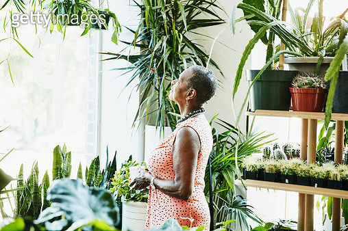 Senior woman admiring plants while shopping in plant store - gettyimageskorea