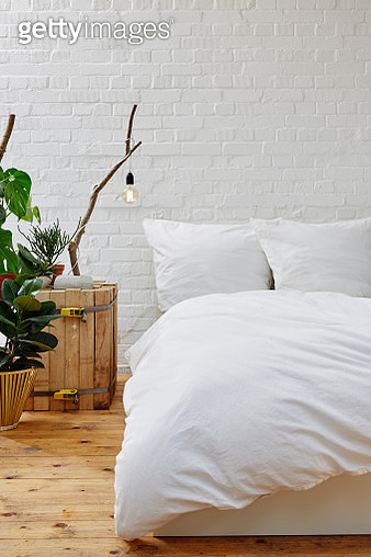 Potted Plant By Bed On Wall At Home - gettyimageskorea