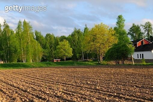 Plowed field landscape - gettyimageskorea