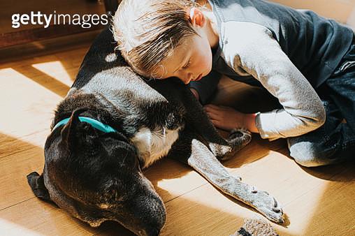 Boy and Dog - gettyimageskorea