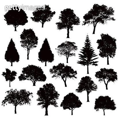 Detailed tree silhouettes - Illustration - gettyimageskorea