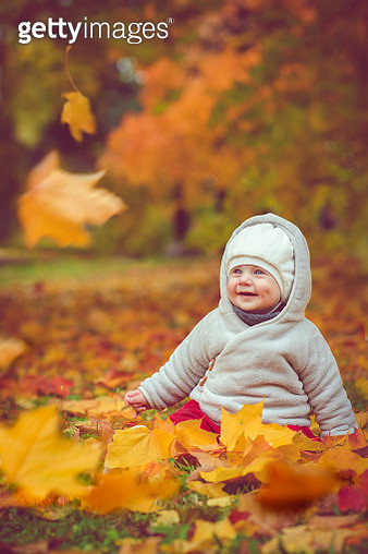 Happy baby boy in autumn - gettyimageskorea