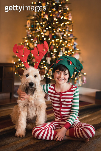 Boy in elf hat and dog in antlers sitting in front of Christmas tree. - gettyimageskorea