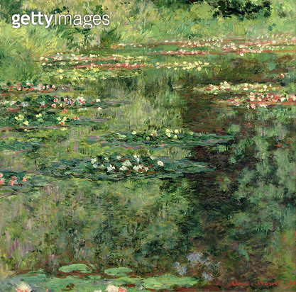 <b>Title</b> : The Waterlily Pond, 1904 (oil on canvas)<br><b>Medium</b> : oil on canvas<br><b>Location</b> : Private Collection<br> - gettyimageskorea