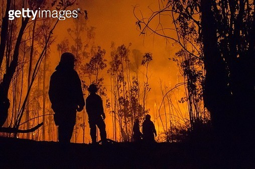 Low Angle View Of Silhouette Firefighters And Trees During Forest Fire - gettyimageskorea
