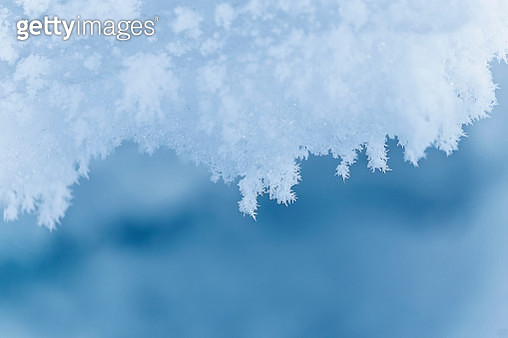 Natural snowflakes on snow - gettyimageskorea