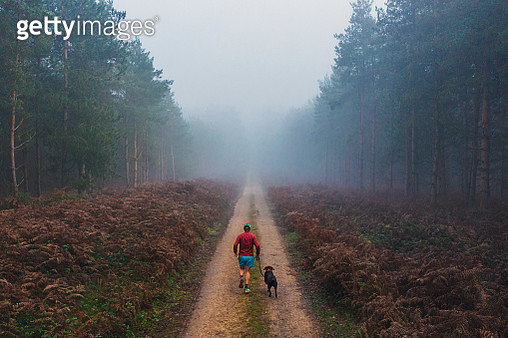 Runner with his dog on forest track - gettyimageskorea