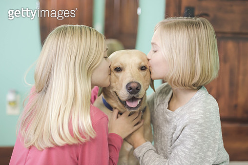 Two sisters are kissing their dog in their bedroom and smiling - gettyimageskorea