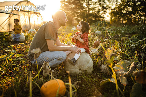 Playful father making faces with his toddler girl while she sitting on a big pumpkin - gettyimageskorea