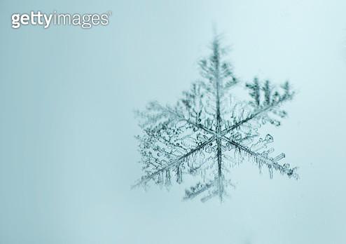 Snowflake - gettyimageskorea