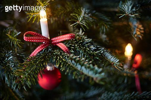Christmas decoration on Christmas tree, close-up - gettyimageskorea