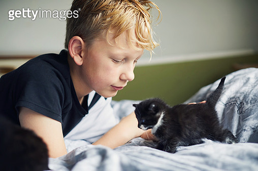 Boy with his kitten - gettyimageskorea