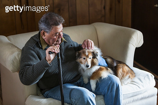 Senior man sitting with his therapy dog - gettyimageskorea