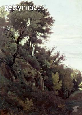 Marino - Trees and Rocks - gettyimageskorea