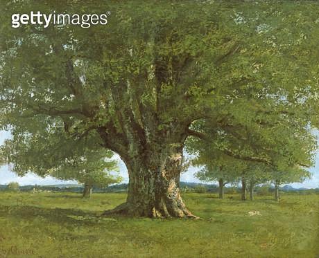 <b>Title</b> : The Oak of Flagey, called Vercingetorix<br><b>Medium</b> : oil on canvas<br><b>Location</b> : Pennsylvania Academy of the Fine Arts, Philadelphia, USA<br> - gettyimageskorea