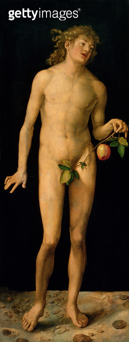 <b>Title</b> : Adam, 1507 (oil on panel)<br><b>Medium</b> : oil on panel<br><b>Location</b> : Prado, Madrid, Spain<br> - gettyimageskorea